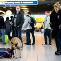 NCTV: dreigingsniveau Nederland blijft 'substantieel'