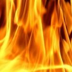Natuurgebieden krijgen code oranje voor risico bosbranden