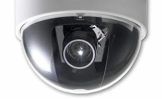 Cameratoezicht in slachthuizen om misstanden te voorkomen