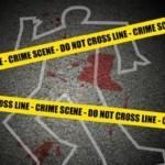 Particuliere experts willen verdachte sterfgevallen onderzoeken